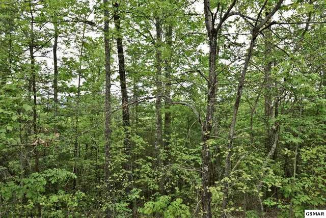 Lot 17E Stackstone Road, Sevierville, TN 37862 (#228200) :: Jason White Team | Century 21 Four Seasons