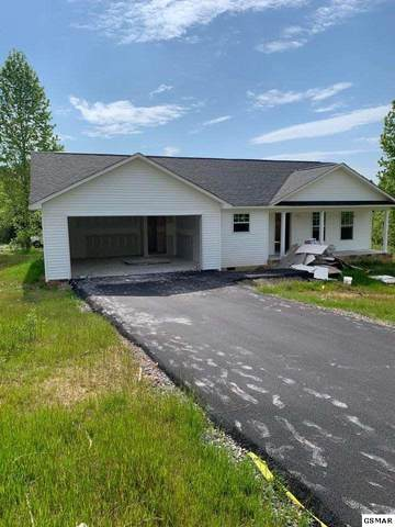 Lot 100 Kimberly Drive, White Pine, TN 37890 (#228213) :: The Terrell Team