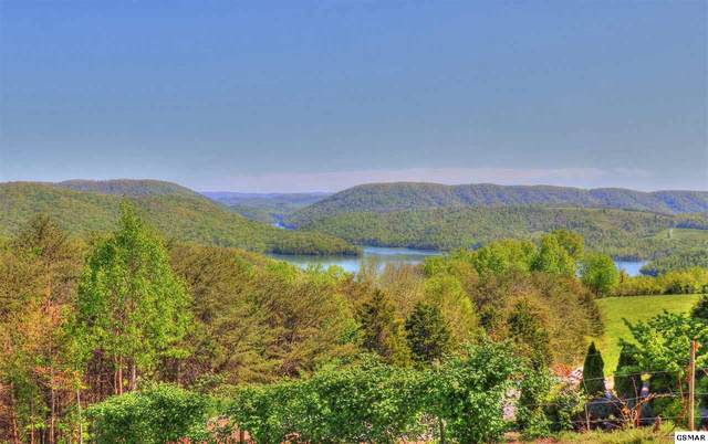 Lot 467 Smokey Quartz Blvd, New Tazewell, TN 37825 (#228245) :: Four Seasons Realty, Inc