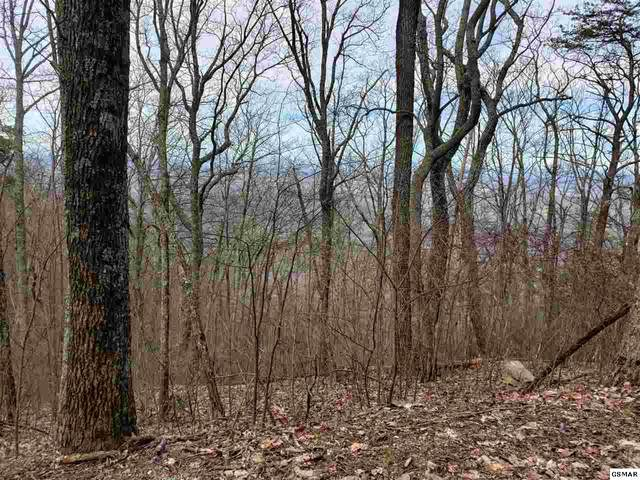 Duncan Springs Road Lots 4,6,8,10,1, Sevierville, TN 37862 (#228251) :: Four Seasons Realty, Inc