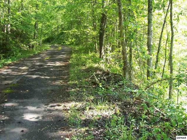 1928 Bales Way Birds Creek Rd , Sevierville, TN 37876 (#228269) :: Four Seasons Realty, Inc