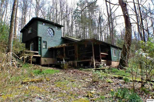 4551 Balsam Way, Cosby, TN 37722 (#228271) :: Prime Mountain Properties