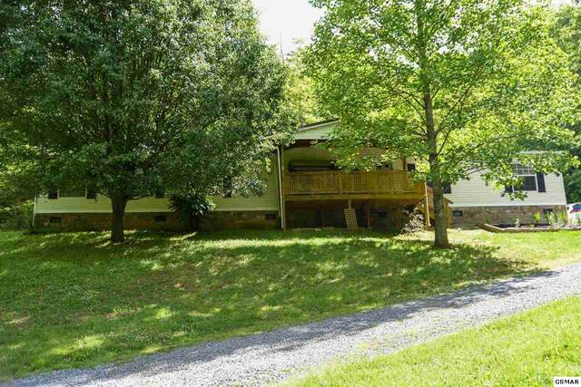 255 Midnight Way, Parrottsville, TN 37843 (#228275) :: Four Seasons Realty, Inc