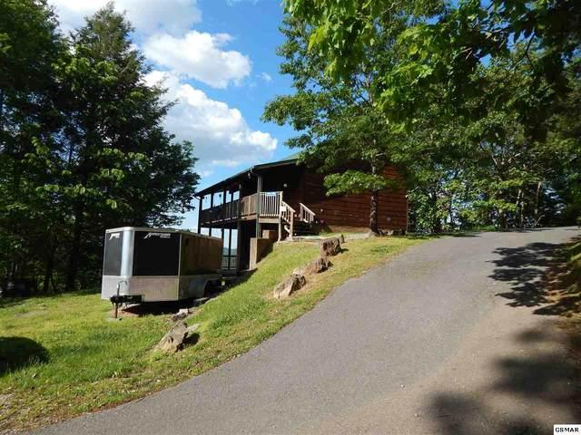 2501 Bobcat Way, Sevierville, TN 37862 (#228284) :: Prime Mountain Properties