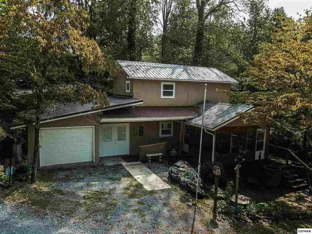 178 Stonewall Way, Cosby, TN 37722 (#228285) :: Colonial Real Estate