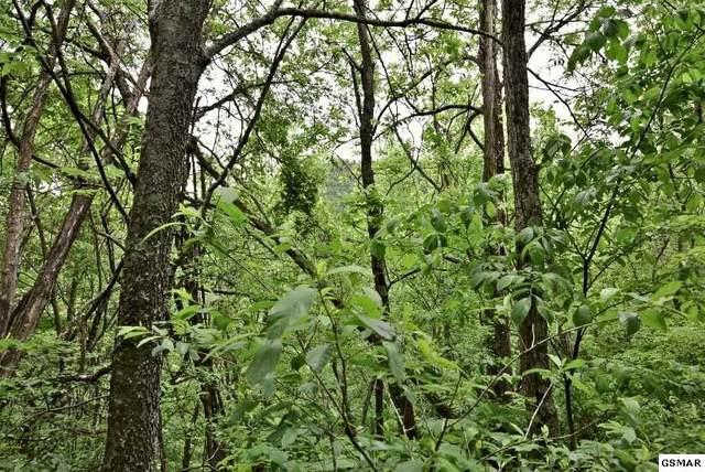 Lot 4-B1 Maranohe Way, Sevierville, TN 37876 (#228287) :: Jason White Team | Century 21 Four Seasons