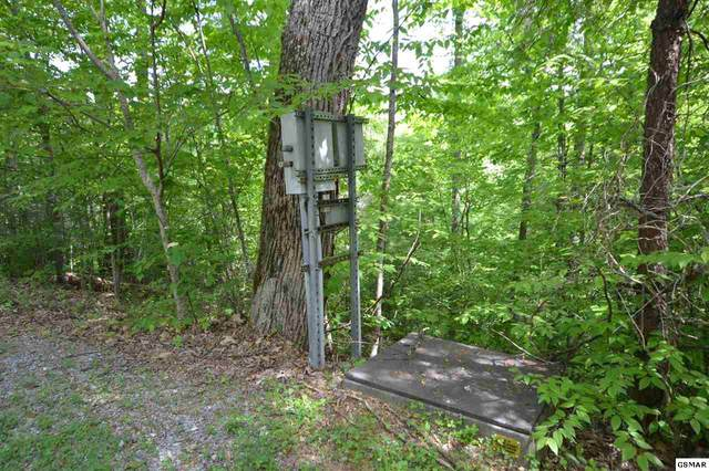 Lot 15 Riversong Way, Sevierville, TN 37876 (#228312) :: Colonial Real Estate