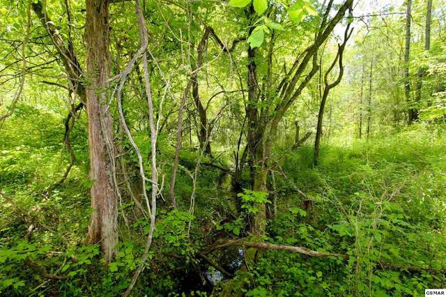 6.58 ACRES Crossfield Rd, Bybee, TN 37713 (#228326) :: Four Seasons Realty, Inc