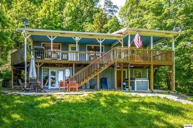 2115 Muddy Creek Rd, Dandridge, TN 37725 (#228335) :: Jason White Team | Century 21 Four Seasons
