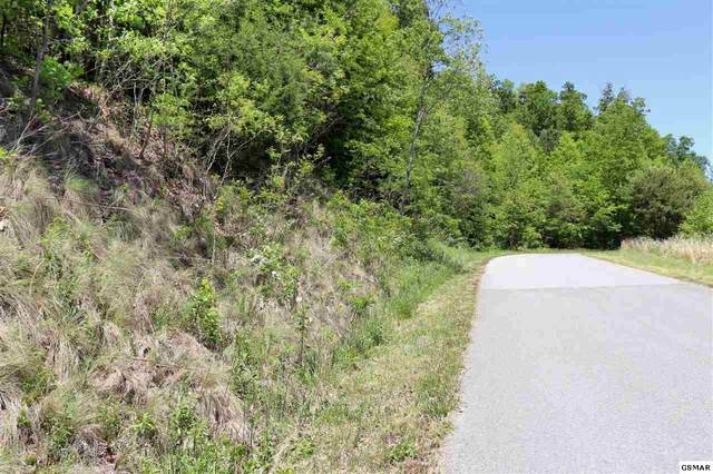 Lot 554 Whistle Valley, New Tazewell, TN 37825 (#228349) :: Prime Mountain Properties