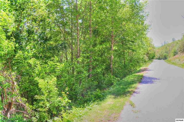 Lot 628 Chimney Rock Rd, New Tazewell, TN 37854 (#228350) :: Prime Mountain Properties
