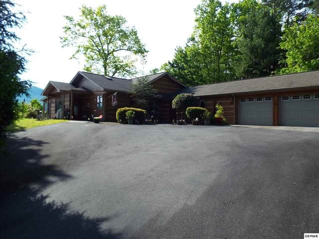 427 Gold Road, Cosby, TN 37722 (#228363) :: Four Seasons Realty, Inc