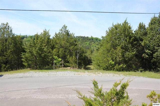 Lot 35 Buck Horn Road, Sevierville, TN 37876 (#228364) :: Four Seasons Realty, Inc
