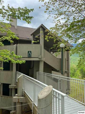 3710 Weber Road, A-101 Unit A-101, Gatlinburg, TN 37738 (#228375) :: Jason White Team | Century 21 Four Seasons