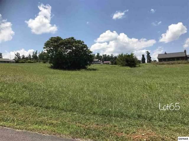 LOT 65 Oneil Rd, Newport, TN 37722 (#228398) :: The Terrell Team