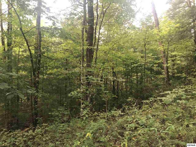 Tr1 Tr1 Tr1 Henry Town Rd, Sevierville, TN 37876 (#228432) :: Colonial Real Estate