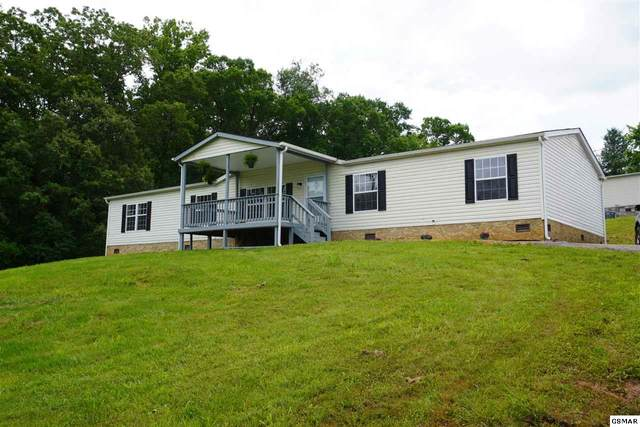 146 Hidden Estates Way, Newport, TN 37821 (#228452) :: Prime Mountain Properties