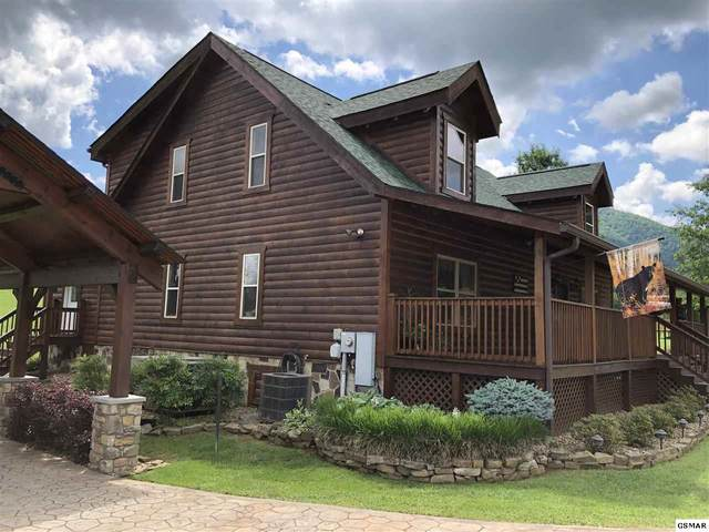3355 Cove Meadows Dr, Sevierville, TN 37862 (#228466) :: Colonial Real Estate
