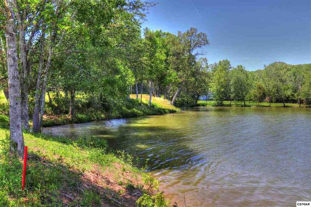 Lot 747 Winton Chapel, Rockwood, TN 27854 (#228480) :: Prime Mountain Properties