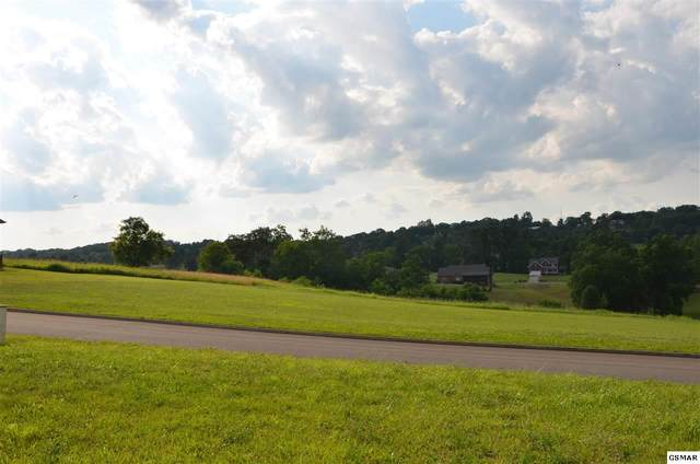 Lot 127 Ohio Street, Seymour, TN 37865 (#228482) :: Four Seasons Realty, Inc