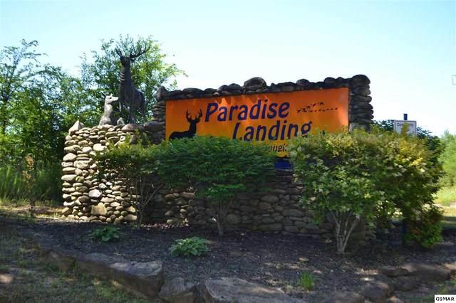 Long Spur Trail Lot 58, Dandridge, TN 37725 (#228487) :: Prime Mountain Properties