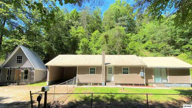 4206 Dellinger Hollow Rd, Pigeon Forge, TN 37863 (#228493) :: Prime Mountain Properties