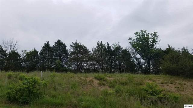 Lot #93 Blue Herring Way, Sevierville, TN 37876 (#228495) :: Four Seasons Realty, Inc