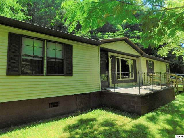 3729 Henry Town Rd, Sevierville, TN 37876 (#228497) :: Colonial Real Estate
