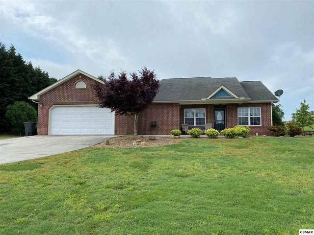 1846 Pheasant Crossing Dr, Dandridge, TN 37725 (#228499) :: Colonial Real Estate