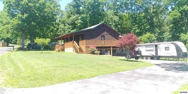 312 Oak Hammock Lane, Parrottsville, TN 37843 (#228500) :: The Terrell Team