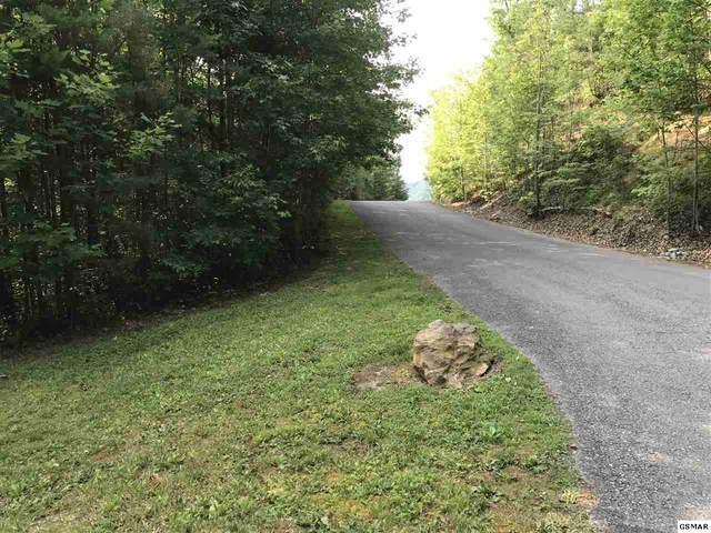 Lot 63 Cedar Falls Way, Sevierville, TN  (#228504) :: The Terrell Team