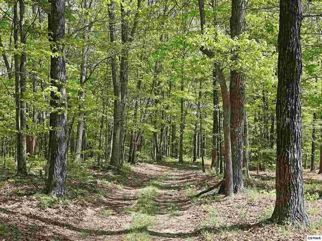 0 Grouse Ridge Road, Harriman, TN 37748 (#228523) :: Jason White Team | Century 21 Legacy