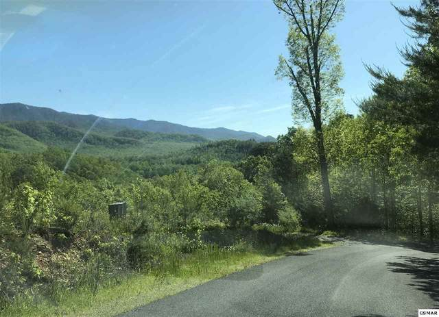 Lot 1 Sonshine Ridge Road 12 Acres, Cosby, TN 37722 (#228537) :: The Terrell Team