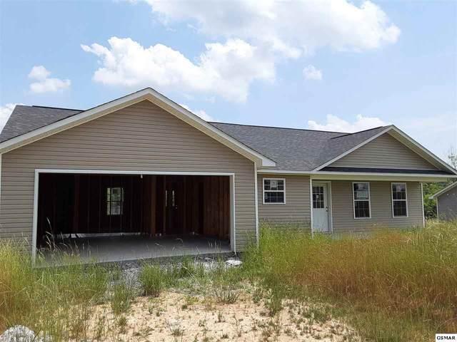 2051 Jonathan Dr, White Pine, TN 37890 (#228543) :: Colonial Real Estate
