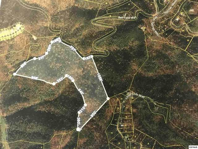 Lot 45H Hatcher Mountain Road, Sevierville, TN 37862 (#228545) :: Prime Mountain Properties