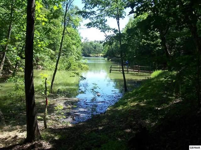 Parcel 032.01 Paradise Ln Off Muddy Creek, Dandridge, TN 37725 (#228546) :: Prime Mountain Properties