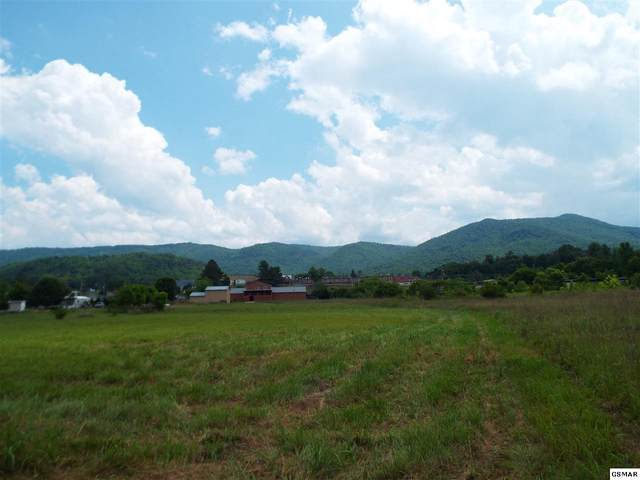 Lot 7 Padgett Mill Rd, Cosby, TN 37722 (#228552) :: Four Seasons Realty, Inc