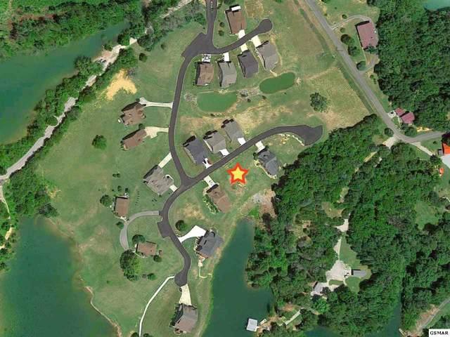 708 Waters Edge, Dandridge, TN 37725 (#228554) :: Prime Mountain Properties