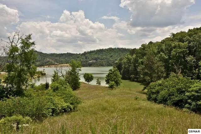 Lot 24 Emerald Pointe Boulevard, Dandridge, TN 37725 (#228556) :: Prime Mountain Properties