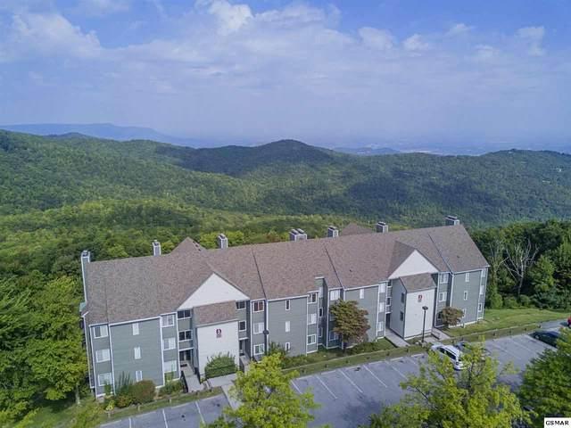 1260 Ski View Drive Unit 5302, Gatlinburg, TN 37738 (#228571) :: Prime Mountain Properties