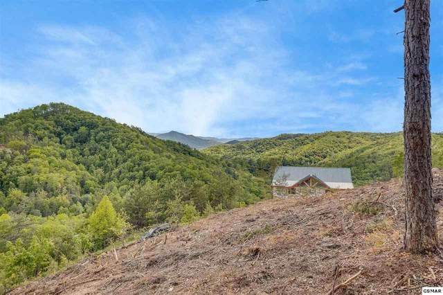 Lot Lot 130 Mountain Ridge Way, Sevierville, TN 37876 (#228575) :: The Terrell Team