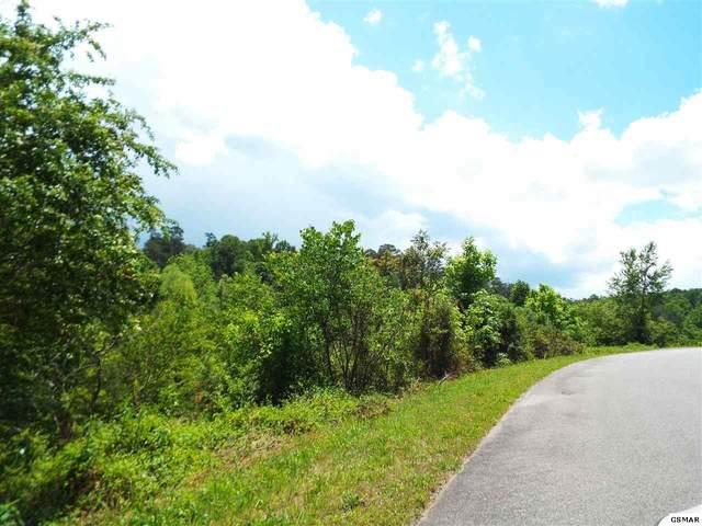 Lot 53 English Fields Dr, Newport, TN 37821 (#228579) :: Four Seasons Realty, Inc