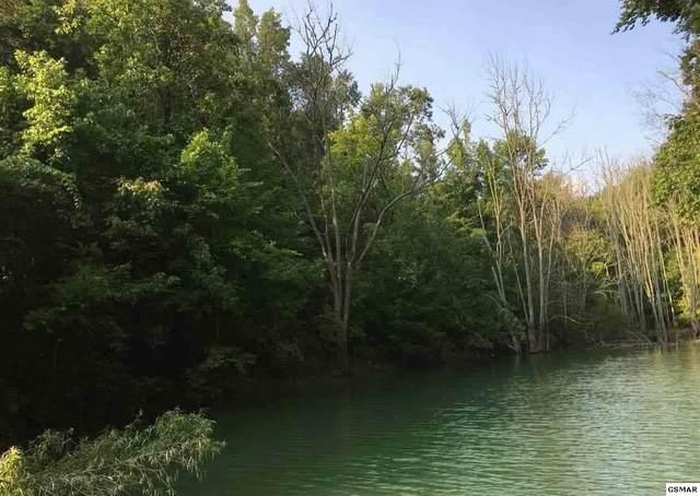 1 Lot Debras Way, Sevierville, TN 37876 (#228580) :: Four Seasons Realty, Inc