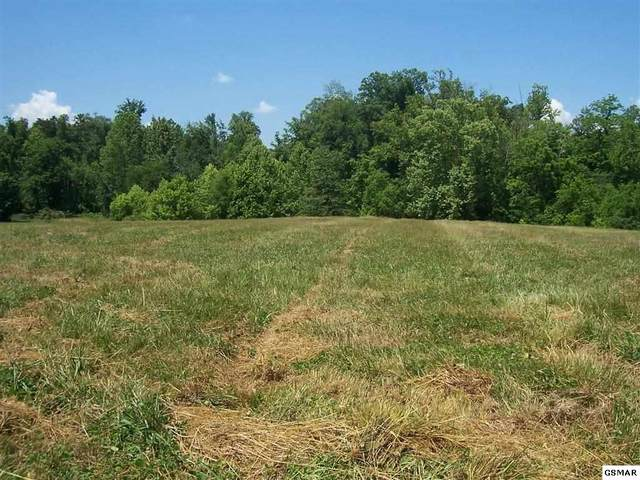 516 Running Brook Dr Lot 5 Lyons Cre, Strawberry Plains, TN 37871 (#228589) :: Colonial Real Estate