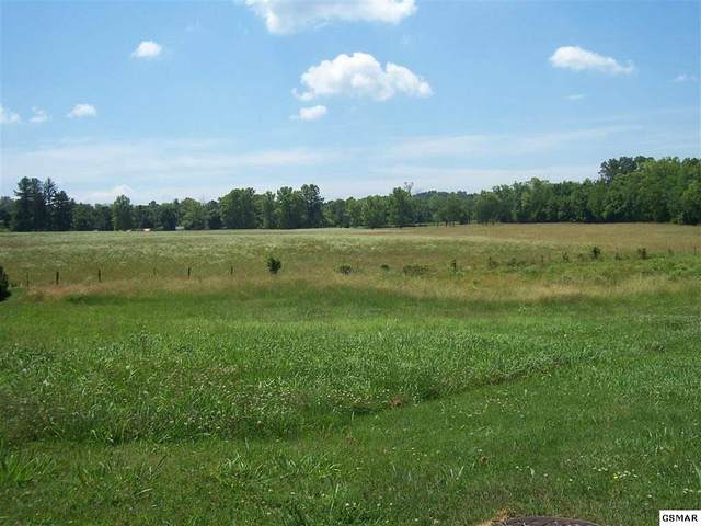 654 Running Brook Dr Lot 17 Lyons Cr, Strawberry Plains, TN 37871 (#228592) :: Colonial Real Estate