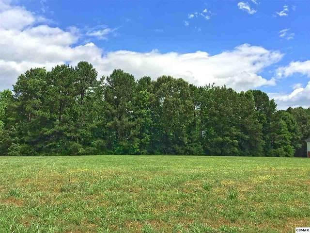 Lot 46 Big Oak Drive, Dandridge, TN 37725 (#228653) :: Four Seasons Realty, Inc