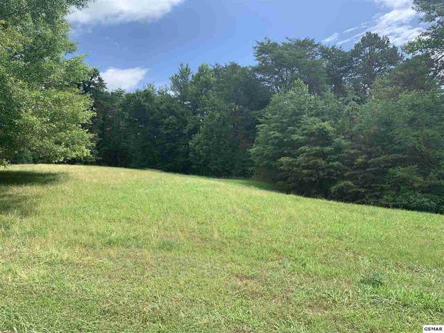 Lot 17 Waterstone Dr., Dandridge, TN 37725 (#228656) :: The Terrell Team