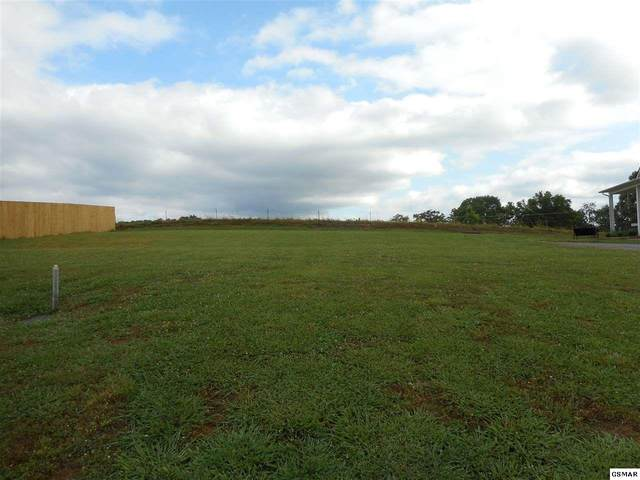 Lot 13 Lori Ellen Ct, Sevierville, TN 37876 (#228676) :: Colonial Real Estate