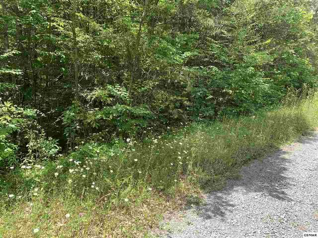 lot 34 Hedge Maple Way, Hartford, TN 37753 (#228684) :: Colonial Real Estate