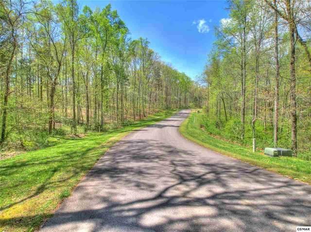 Lot 60 E Shore Dr, Rockwood, TN 37854 (#228685) :: Four Seasons Realty, Inc
